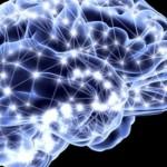 sinapsis-neuronal-599x275